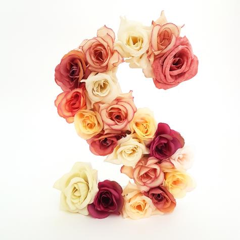 Letra Floral S